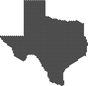 State of Texas TX
